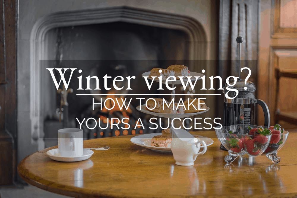 Winter viewing? How to make yours a success