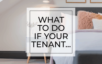 What to do if your tenant…7 troubleshooting tips for North Devon landlords